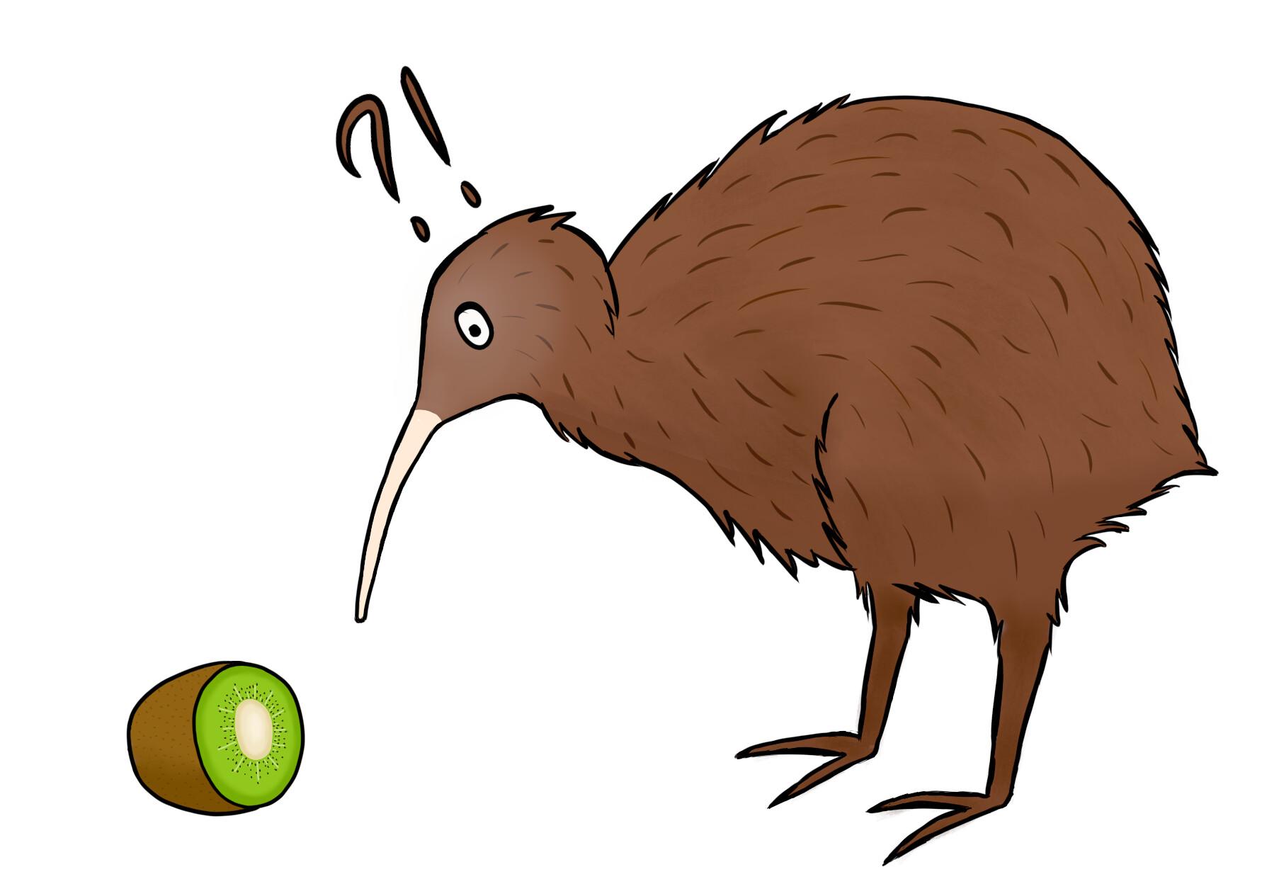 Nový Zéland – voľby vtáka roka
