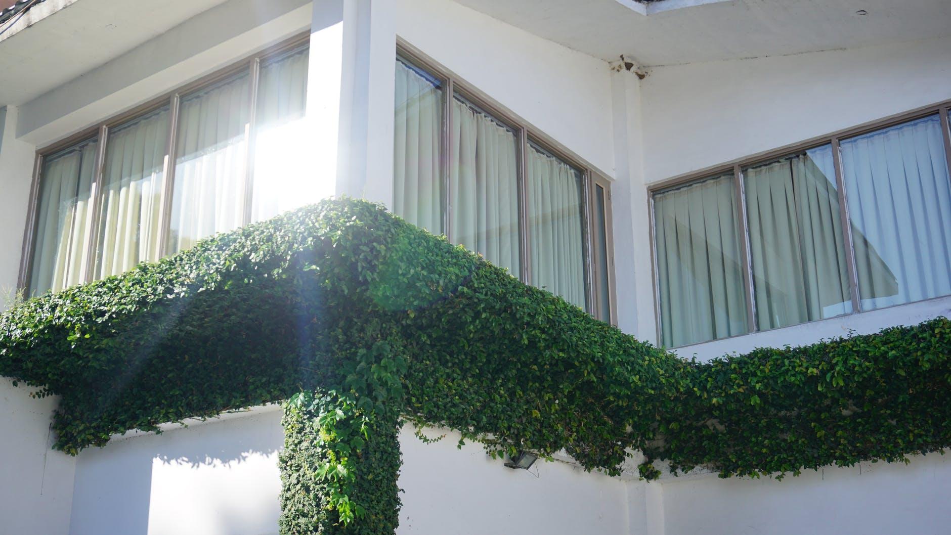 okná na dom